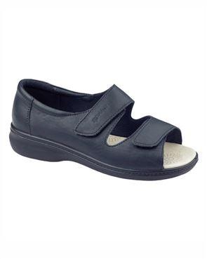 Shell Shoe
