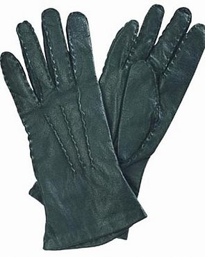 Leather and Silk Gloves