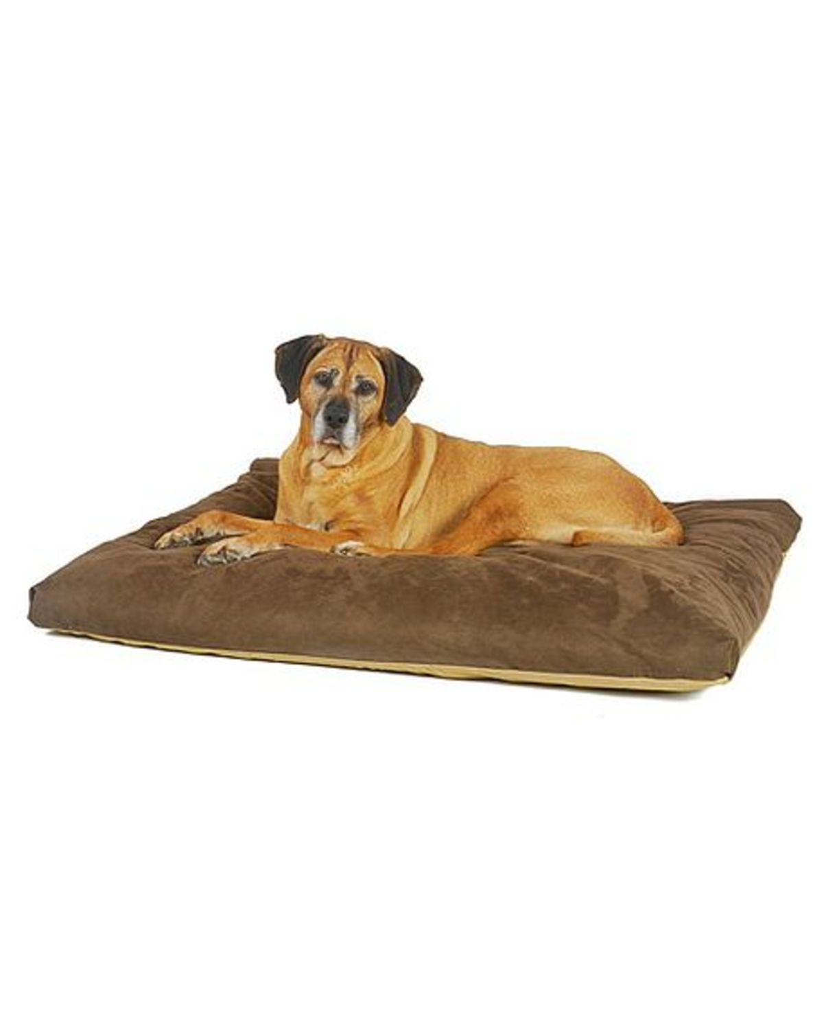 de luxe memory foam dog bed. Black Bedroom Furniture Sets. Home Design Ideas